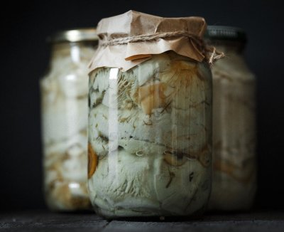 Как солить грузди в домашних условиях — 5+ рецептов [2018]