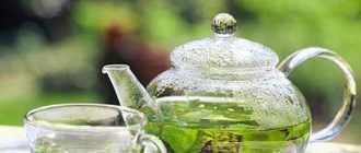 Почему нужно пить зеленый чай