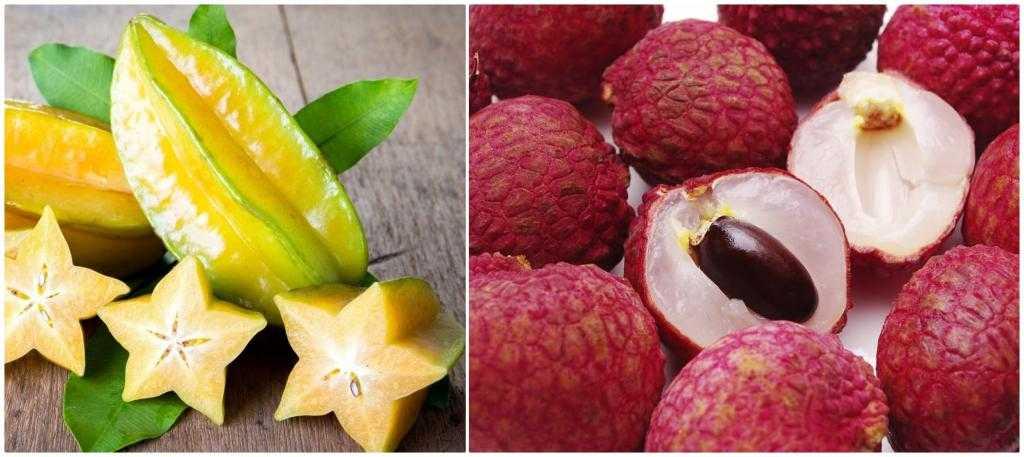 Все экзотические фрукты: фото и названия, поиск по фото