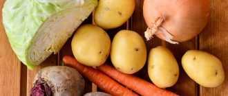 Борщ из курицы со свежей капустой: рецепт, подготовка продуктов, особенности приготовления
