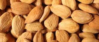 Абрикосовые косточки: калорийность, полезные свойства, противопоказания