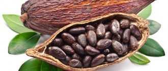 Шоколад: химический состав, пищевая ценность