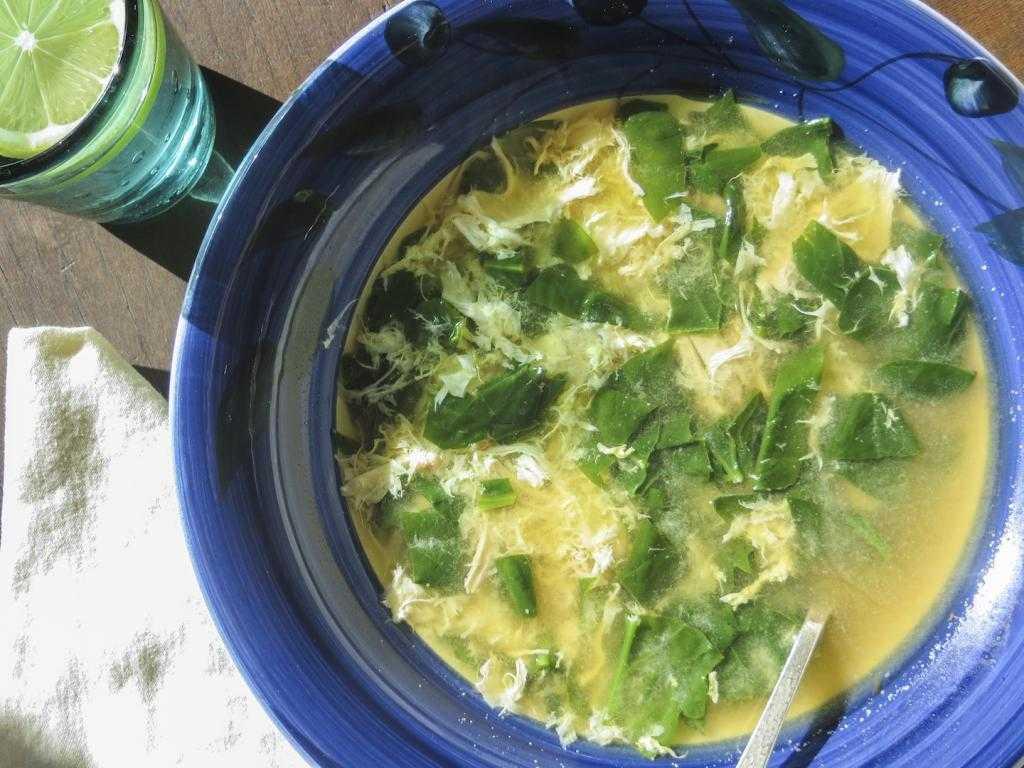 Куриный суп со шпинатом: рецепты приготовления