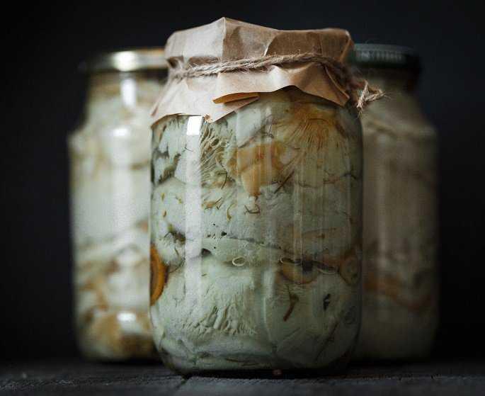 Как солить грузди в домашних условиях — 5+ рецептов