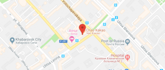 Кафе китайской кухни в Хабаровске: описание, услуги