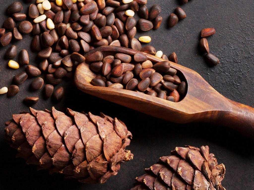 Как очистить кедровый орех от скорлупы в домашних условиях: способы и рекомендации