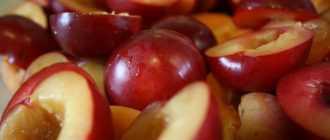 Как приготовить компот из сухофруктов в мультиварке «Редмонд»