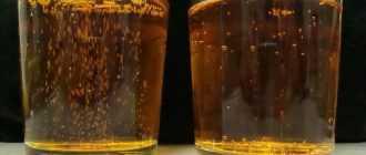 """Эко-пиво """"Лосиный берег"""". Описание, характеристики, вкус, отзывы"""