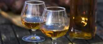 Яблочный коньяк кальвадос: что это за напиток и как его пить?