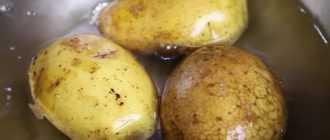 Крабовый салат с картошкой: подбор ингредиентов и рецепт приготовления