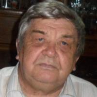 Герасим Силин